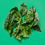 Raw spinach on green background.