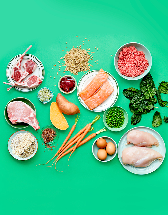 Raw dog food ingredients on green background.